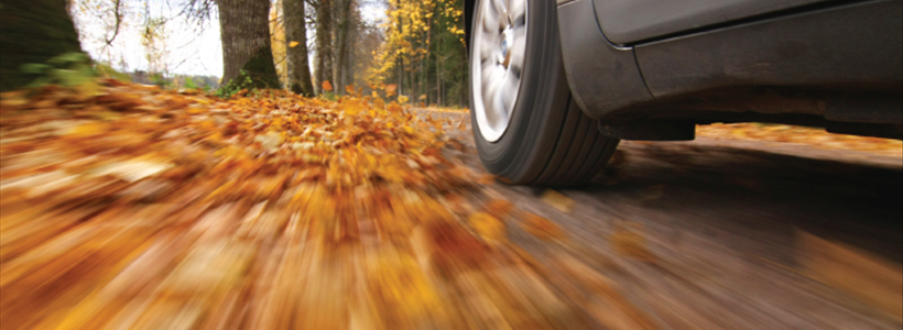 Preparing Your Car for Fall
